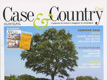 CASE E COUNTRY N.201